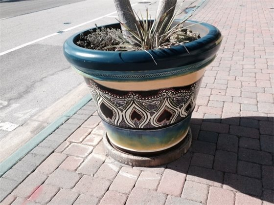 Downtown Planter