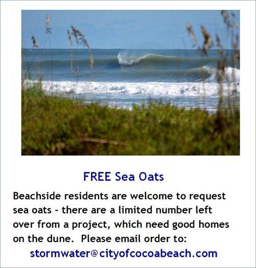 Free Sea Oats