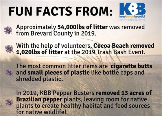 Fun Facts from KBB: Content on Page