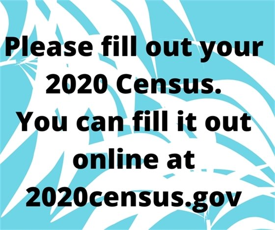Fill out your census online