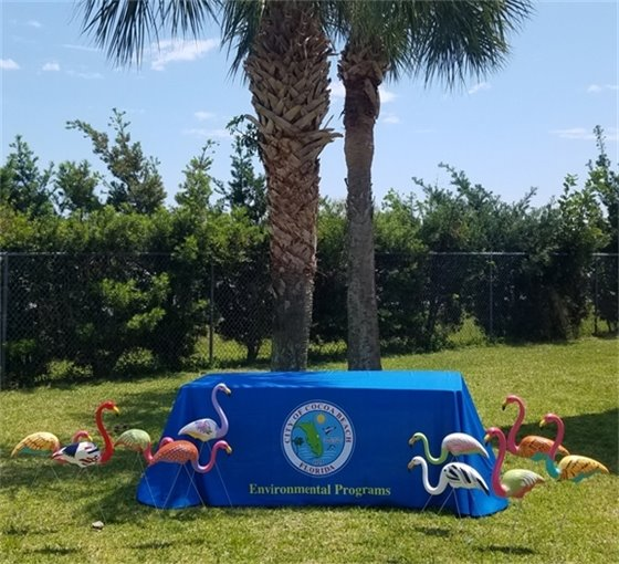 City of Cocoa beach Environmental Programs table, surrounded by the  Cocoa Beach Floridan Friendly Flock of lawn ornament flamingos, painted by Jeannie Lagan Heins Langan who owns the Langan Studio in Cocoa Beach