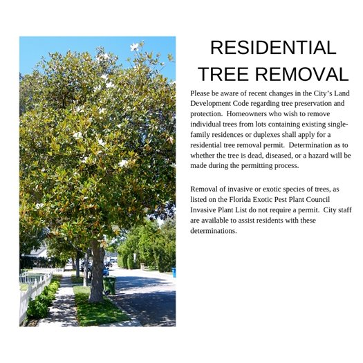 Do not remove trees without contacting Development Services