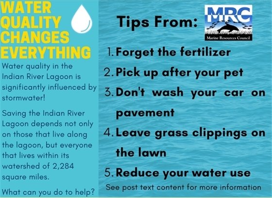 Water Quality Tips from The Marine Resources Council: content on page