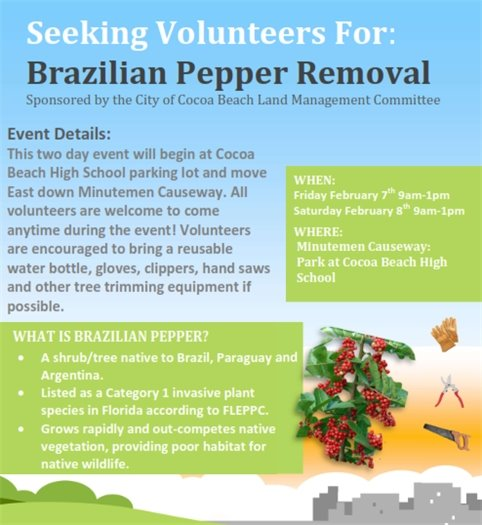 Volunteer to cut down pepper trees Feb 7-8 9-1pm CBHS