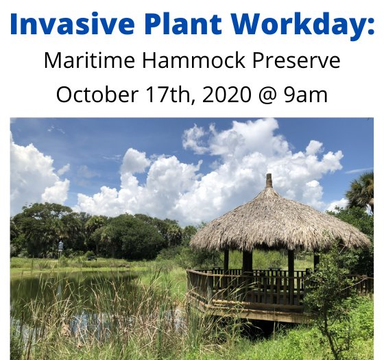 flyer for maritime hammock preserve invasive plant workday october 17th at 9am