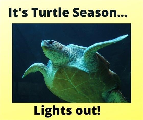 Please turn off lights during turtle season