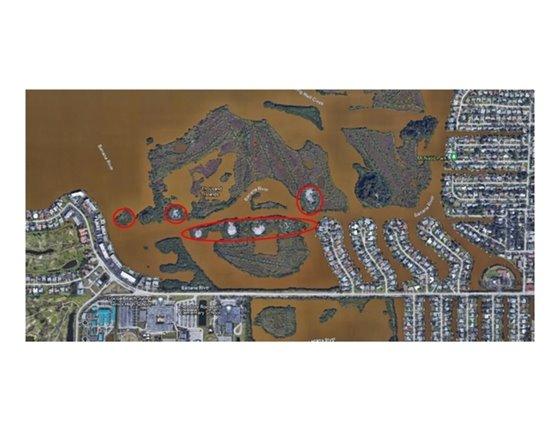 Removing invasive plants on island-circle areas
