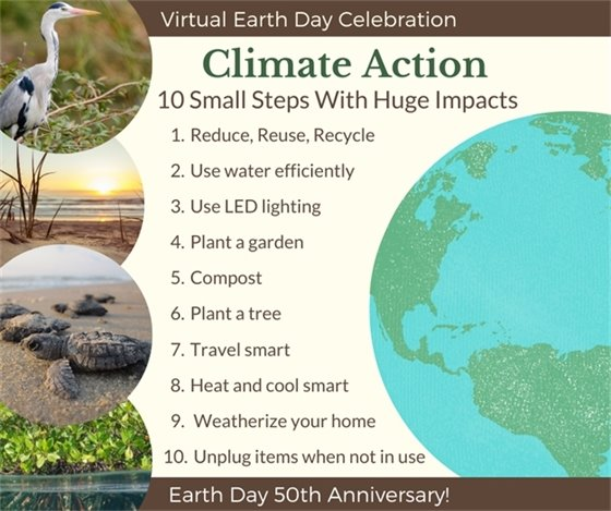 Climate Action: Content on page